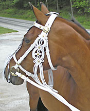 Hungarian Riding Bridle